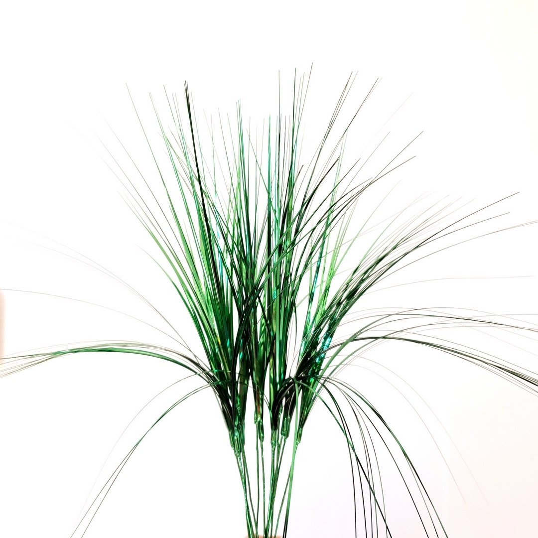 Onion Grass - Hunter Floral supplier in Canada | Party ...